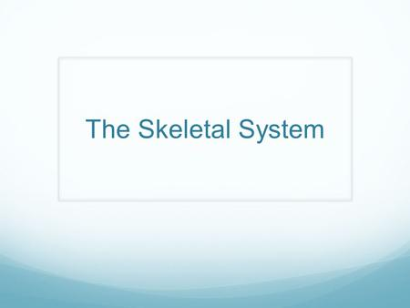 The Skeletal System. Functions of the Skeletal System 1. Support – provides a framework for softer tissues and organs of the body to attach 2. Protection.