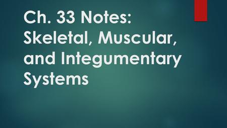 Ch. 33 Notes: Skeletal, Muscular, and Integumentary Systems.