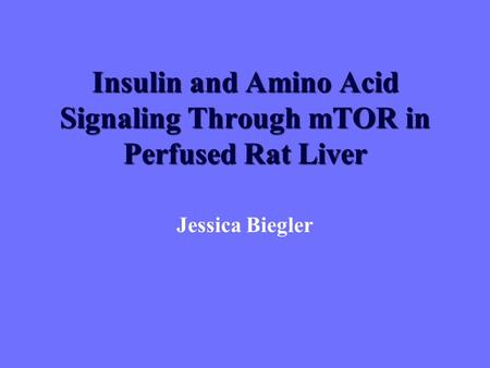 Insulin and Amino Acid Signaling Through mTOR in Perfused Rat Liver Jessica Biegler.