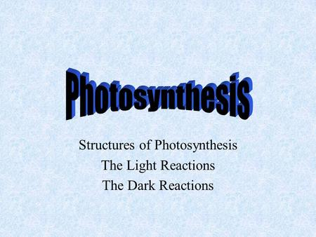 Structures of Photosynthesis The Light Reactions The Dark Reactions.