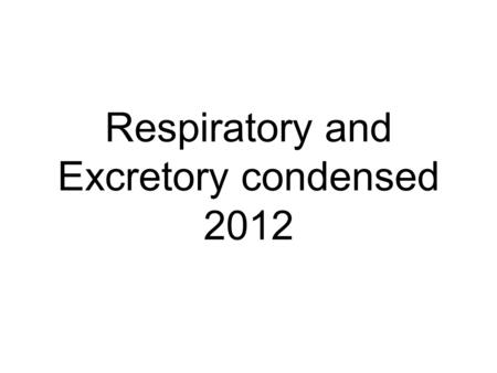 Respiratory and Excretory condensed 2012. Alveoli Alveoli are the air sacs in your lungs Moist thin membranes Surrounded by a network of blood capillaries.