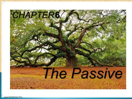 3/9/20161 CHAPTER 6 The Passive.  Passive Voice is used when:  It is not necessary to mention the doer of an action. E.g.Rice is grown in India.  We.