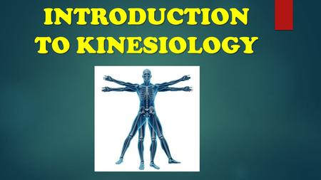 INTRODUCTION TO KINESIOLOGY. KINESIOLOGY IS… THE STUDY OF HUMAN MOVEMENT.