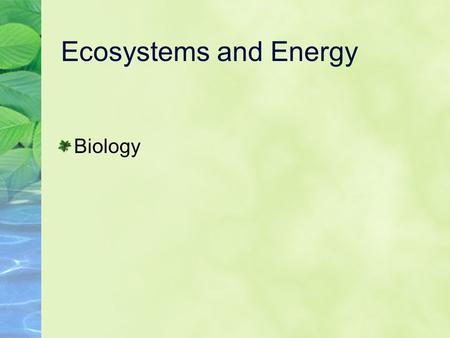 Ecosystems and Energy Biology.