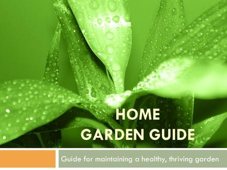HOME GARDEN GUIDE Guide for maintaining a healthy, thriving garden.