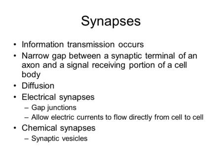 Synapses Information transmission occurs Narrow gap between a synaptic terminal of an axon and a signal receiving portion of a cell body Diffusion Electrical.