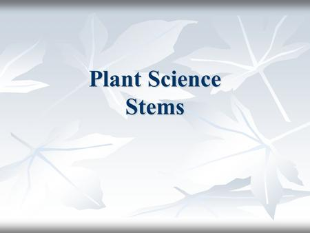 Plant Science Stems. Stems Stems Stems The main stem and branches are the scaffolding of The main stem and branches are the scaffolding of the plant Supports.