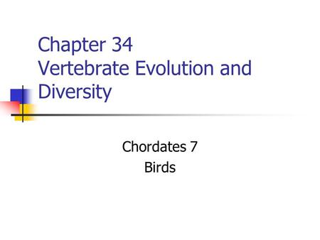 Chapter 34 Vertebrate Evolution and Diversity Chordates 7 Birds.