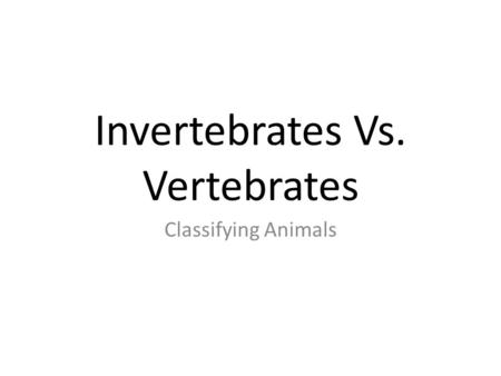 Invertebrates Vs. Vertebrates Classifying Animals.