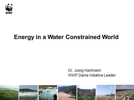 Dr. Joerg Hartmann WWF Dams Initiative Leader Energy in a Water Constrained World.