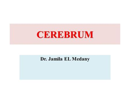 CEREBRUM Dr. Jamila EL Medany. Objectives At the end of the lecture, the student should be able to:  List the parts of the cerebral hemisphere (cortex,