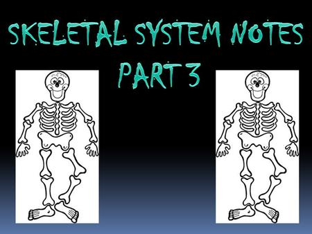 What are the parts of the skeletal system? The parts of the skeletal system include bones, cartilage, tendons, ligaments. What are the functions of the.