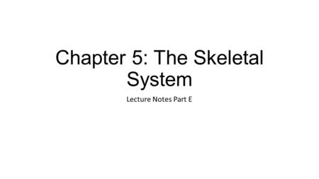 Chapter 5: The Skeletal System Lecture Notes Part E.