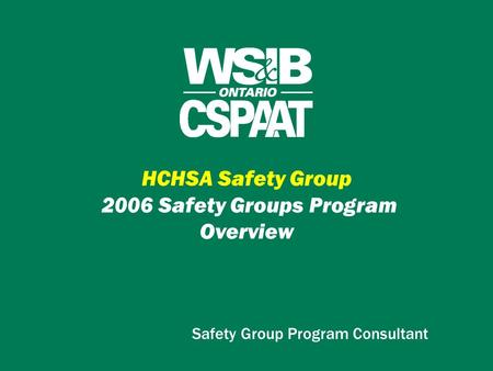 HCHSA Safety Group 2006 Safety Groups Program Overview Safety Group Program Consultant.