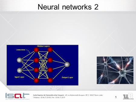 1 Neural networks 2. 2 Introduction: Neural networks The nervous system contains 10^12 interconnected neurons.