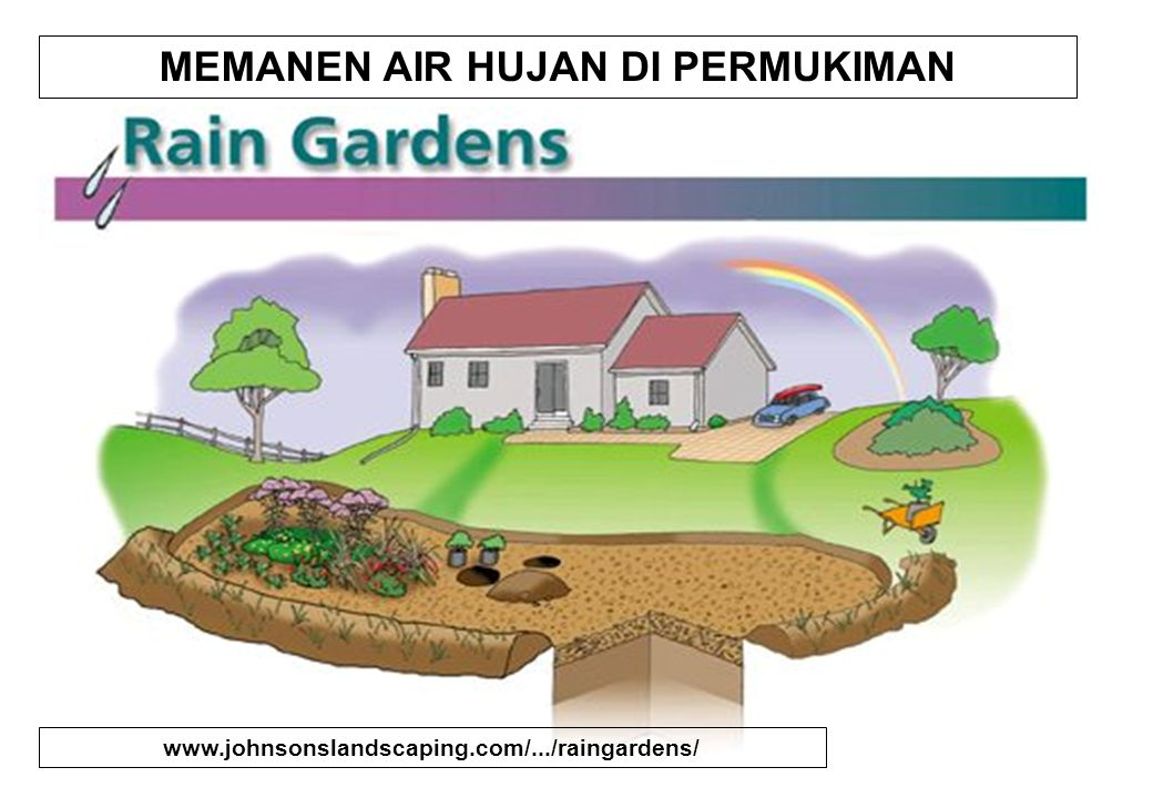RAIN GARDENs A rain garden is a planted depression that is designed to allow rainwater runoff the opportunity to be absorbed from impervious urban areas like roofs, driveways, walkways, and compacted lawn areas.