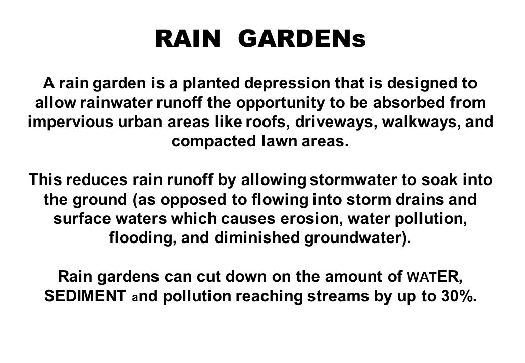 RAIN GARDENs Rain gardens are beneficial for many reasons: improve water quality by filtering run-off, provide localized flood control, aesthetically pleasing, and provide interesting planting opportunities.