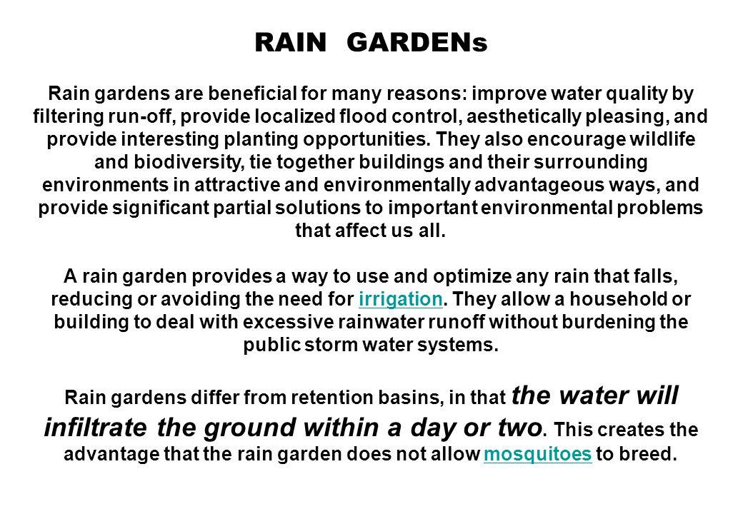 Model Rain-gardens dgn aneka vegetasi www.ci.des-moines.ia.us/.../rain_gardens.htm