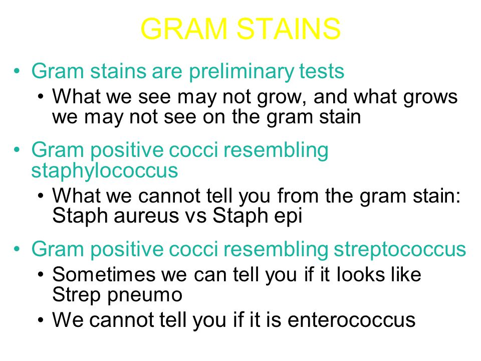 GRAM STAINS Gram negative rods: –Sometimes we can tell if it looks like an enteric, pseudomonas, or Haemophilus –What we cannot tell you is which enteric gram negative rod.