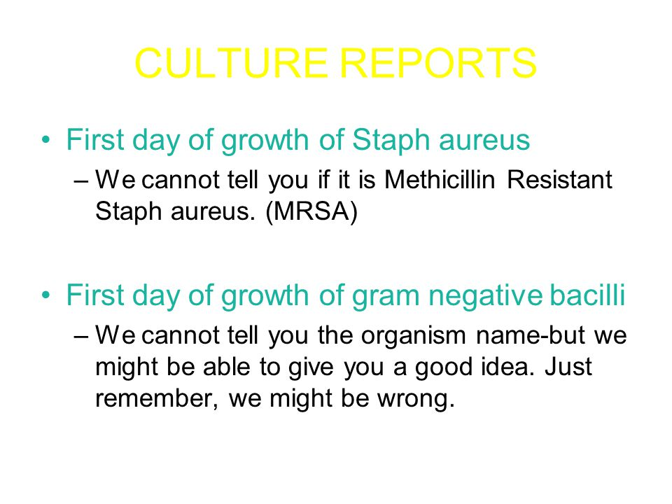 CULTURE REPORTS Streptococcus on plate media may be alpha, beta, or gamma in appearance.