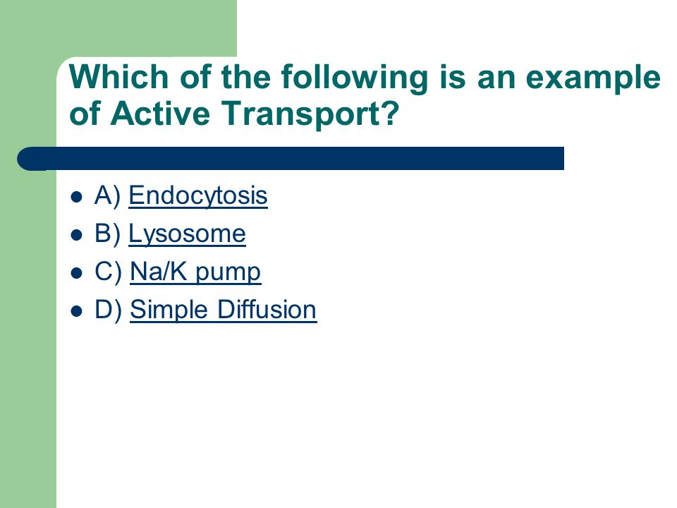 A) EndocytosisEndocytosis B) LysosomeLysosome C) Na/K pumpNa/K pump D) Simple DiffusionSimple Diffusion Which of the following is an example of Active Transport?