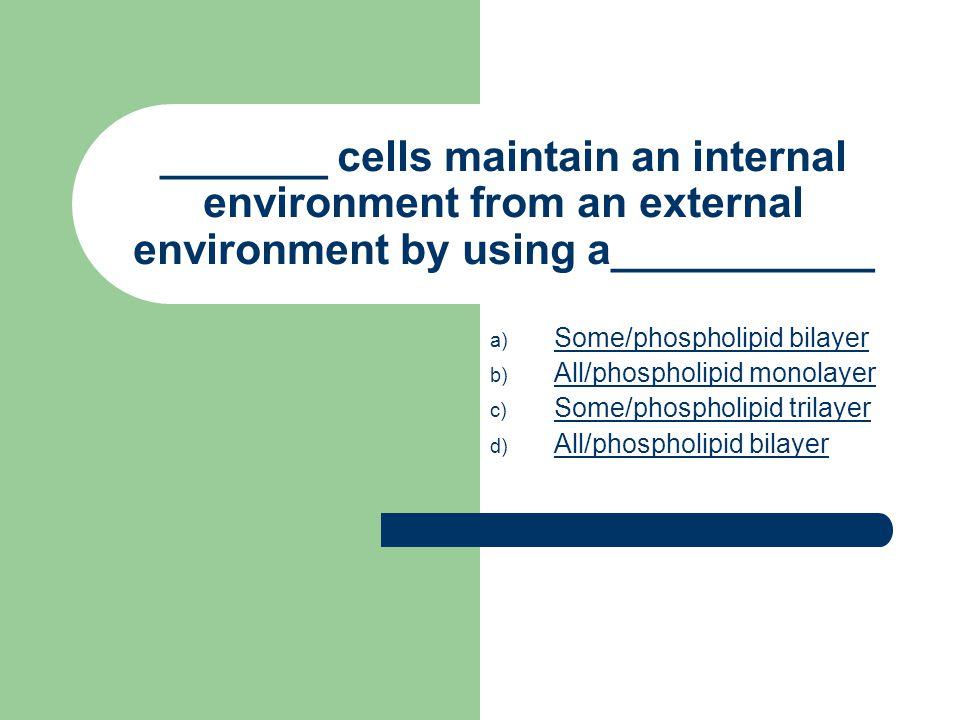 _______ cells maintain an internal environment from an external environment by using a___________ a) S Some/phospholipid bilayer b) A All/phospholipid monolayer c) S Some/phospholipid trilayer d) A All/phospholipid bilayer