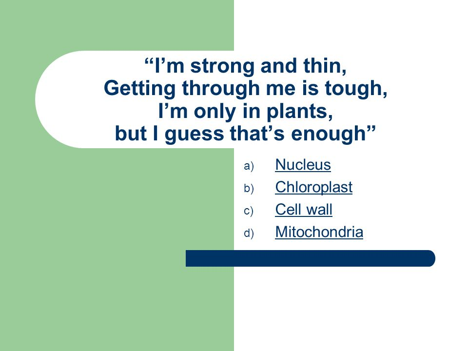 I'm strong and thin, Getting through me is tough, I'm only in plants, but I guess that's enough a) N Nucleus b) C Chloroplast c) C Cell wall d) M Mitochondria