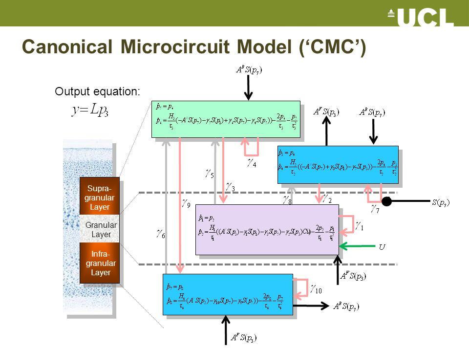 Canonical Microcircuit Model ('CMC')