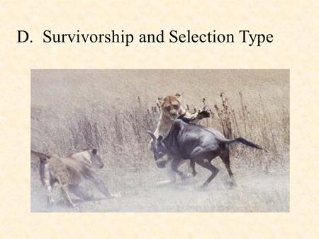 D.  Survivorship and Selection Type