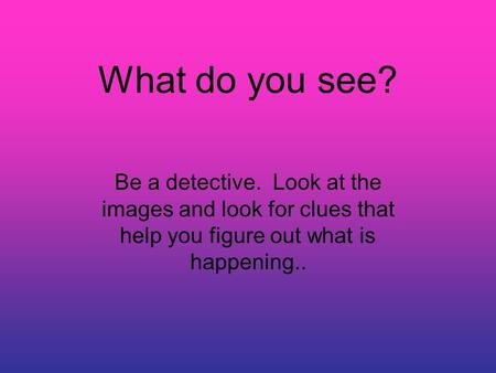 What do you see? Be a detective. Look at the images and look for clues that help you figure out what is happening..