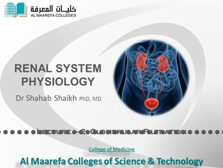 Lecture – 2: Glomerular Filtration RENAL SYSTEM PHYSIOLOGY Dr Shahab Shaikh PhD, MD College of Medicine Al Maarefa Colleges of Science & Technology College.