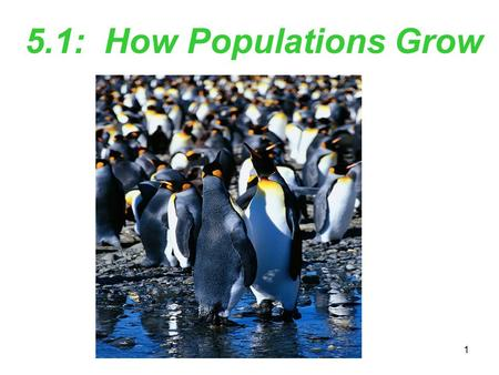 1 5.1: How Populations Grow. 2 Key Features of Populations When ecologists study changes in an ecosystem, they study it at the population level. population: