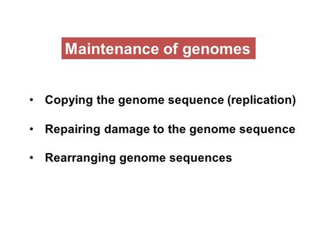 Maintenance of genomes Copying the genome sequence (replication) Repairing damage to the genome sequence Rearranging genome sequences.