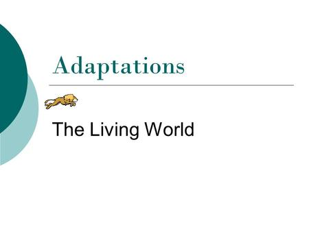 Adaptations The Living World.
