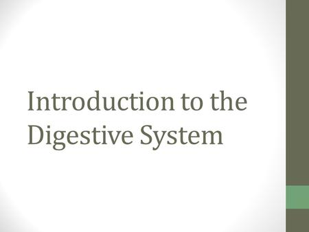 Introduction to the Digestive System. Organs of the Digestive System Two main groups Alimentary canal (gastrointestinal or GI tract)—continuous coiled.