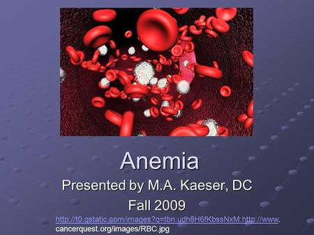 Anemia Presented by M.A. Kaeser, DC Fall 2009