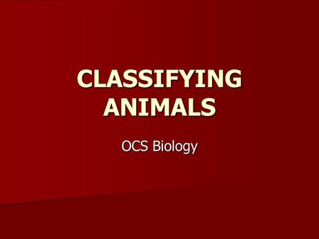 CLASSIFYING ANIMALS OCS Biology. Classifying Animals Biologists divide animals into groups based on their similarities. Biologists divide animals into.