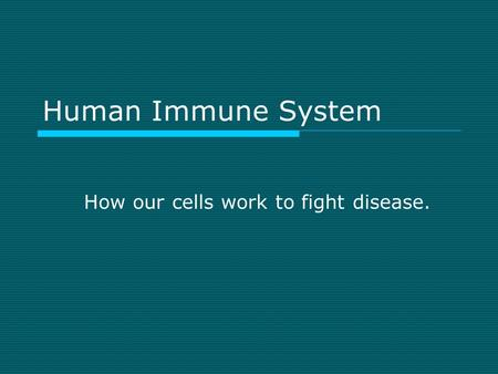 Human Immune System How our cells work to fight disease.