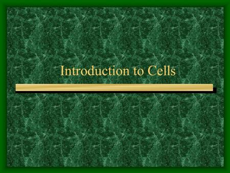 Introduction to Cells. The Animal Cell 1. 2. 3. 4. 5. 6. 7. 8. 9. 10. 11. 12.