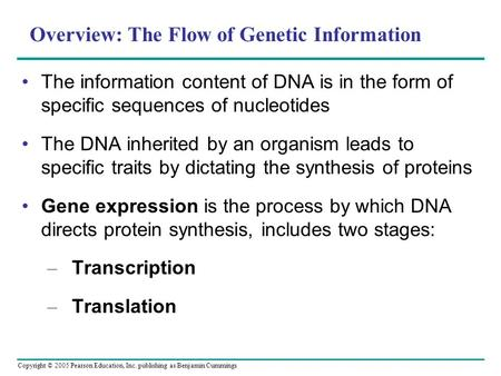 Copyright © 2005 Pearson Education, Inc. publishing as Benjamin Cummings Overview: The Flow of Genetic Information The information content of DNA is in.