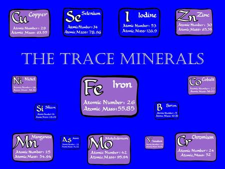 The Trace Minerals. Objectives After reading Chapter 7 and class discussion, you will be able to: –Identify trace minerals –Define trace minerals –Define.