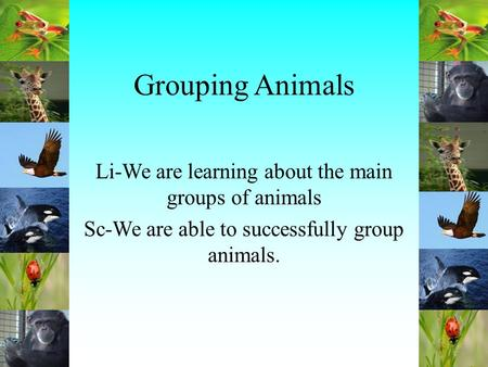 Grouping Animals Li-We are learning about the main groups of animals Sc-We are able to successfully group animals.