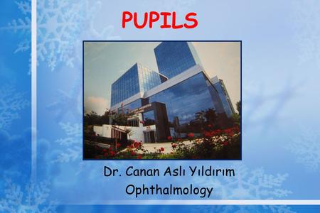 PUPILS Dr. Canan Aslı Yıldırım Ophthalmology. Pupillary Reactions A three-neuron arc Afferent neurons from retinal ganglion cells to pretectal area and.