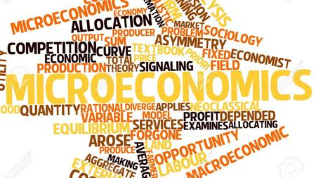 Microeconomics A branch of economics that studies the behavior of individuals and firms in making decisions regarding the allocation of limited resources.