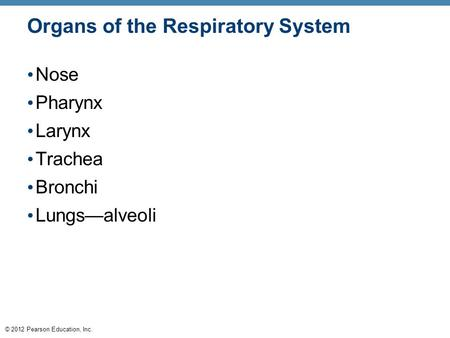 © 2012 Pearson Education, Inc. Organs of the Respiratory System Nose Pharynx Larynx Trachea Bronchi Lungs—alveoli.