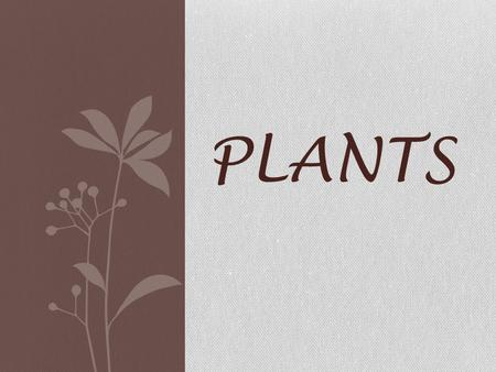PLANTS. Plants Language Arts BOOKS: The Carrot Seed; Pumpkin, Pumpkin; Pearl Plants a Tree; The Giving Tree; Trees ACTIVITIES: 1. Write a sequence of.