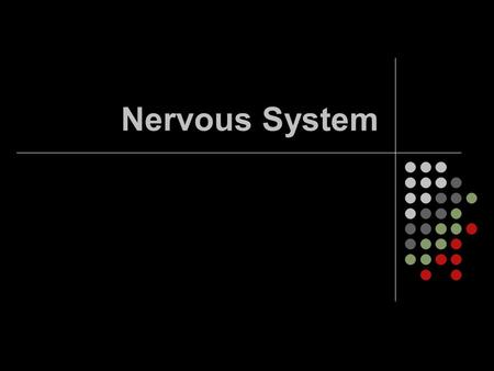 Nervous System. Questions 1. What are the functions of the nervous system? 1. Receives information about what's happening inside and outside the body.