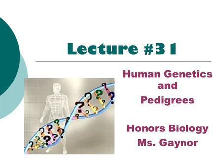 Lecture #31 Human Genetics and Pedigrees Honors Biology Ms. Gaynor.