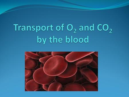 Transport of Oxygen The liquid part of the blood, the blood plasma, carries some O 2 in solution, but is limited (only 0.3mL of O 2 per 100mL plasma)
