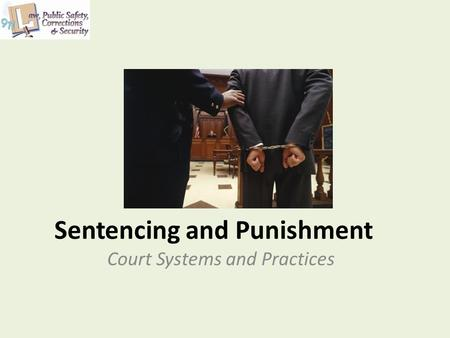 Sentencing and Punishment Court Systems and Practices.
